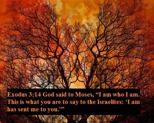 Exodus 3 14