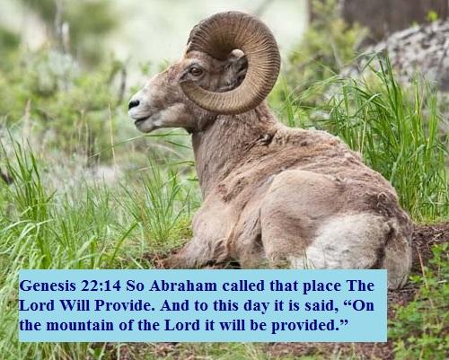 Genesis 22 14
