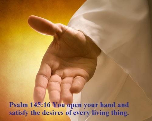 Psalms 145 16