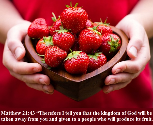 Matthew 21 43